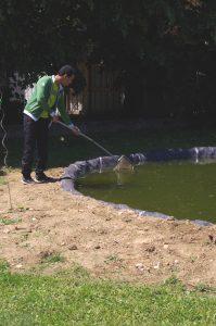 Le bassin demande de l'entretien