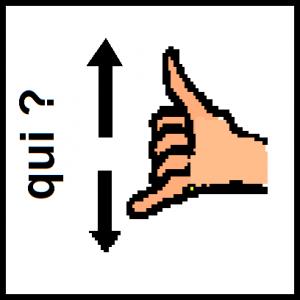 QUI (3)