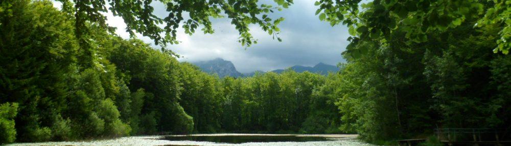 Blog des établissements et service de la Fondation OVE de Thonon-les-Bains